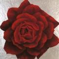 Mandala di Rosa Barni - 60x65cm