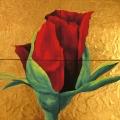 Rosa Helvetica - 128x124cm