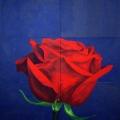r104-rosa-baccarat-185x168