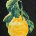 V133-Limone-di-Amalfi-35x50
