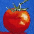 V187-Tomato-blu-16x21
